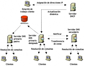DNS(Domain Name System)