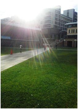 Campus de la UNSW, Sidney